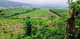 Vendo finca 10 hectareas