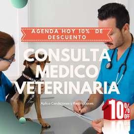 Consulta Medico Veterinario Domicilio Pasto