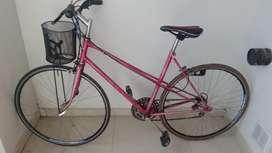 Bicicleta Rod 28, Especial para Ruta
