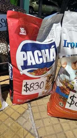 Pacha x22 kg alimento para mascotas
