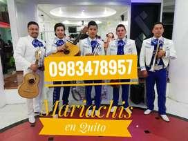 Mariachis en Quito el mejor servicio mena dos gatazo solanda ajavi