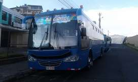 Bus tipo 2013