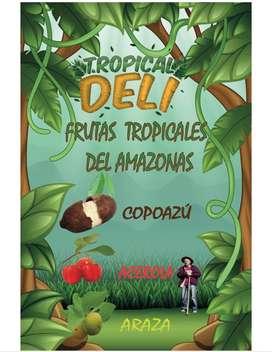 PULPA DE FRUTAS AMAZÓNICAS: COPOAZÚ , ACEROLA, ARAZA, YACA Y MACAMBO900
