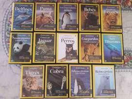 DVD Animales En Accion De Colección Lote