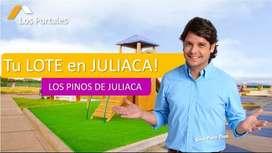 PROYECTO LOS PINOS DE JULIACA