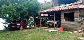 Vendo o permuto Finca en Lerida Tolima de 8 hectareas.
