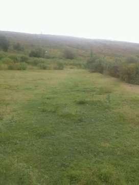 Vendo campo en las termas 10 hectáreas