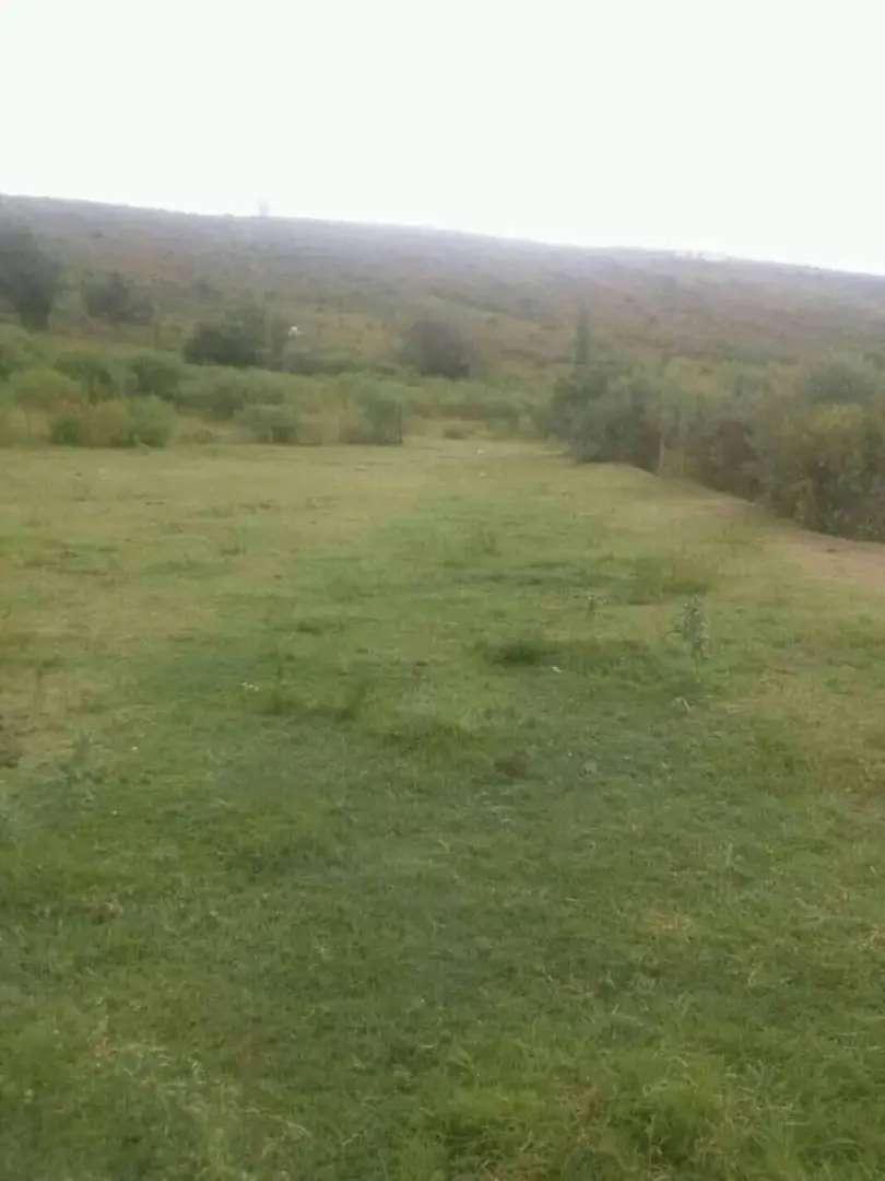 Vendo campo en las termas 10 hectáreas 0