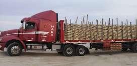 Vendo Freightliner CL112 del 2013