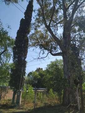 Vendo terreno Ibarlucea, zona súper tranquila