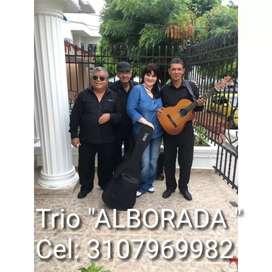 El trío de serenatas somos nosotros