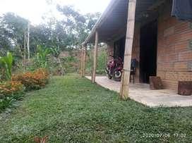 Finca con dos apartamentos nuevos en San Carlos -Antioquia