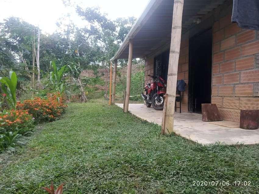 Finca con dos apartamentos nuevos en San Carlos -Antioquia 0