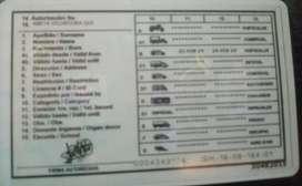 Chofer con Licencia tipo (B) 100 puntos