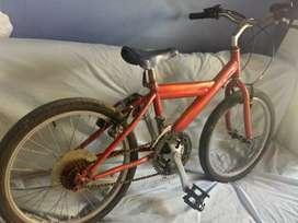 Bicicleta todoterreno Rhinno
