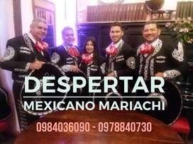 Mariachi en Quito todo evento desde 35usd