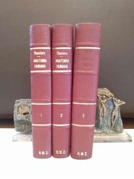 Rouviere Anatomía Humana (3 Tomos)
