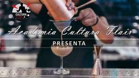 Bartender COCTELERIA BASICA AVANAZADA