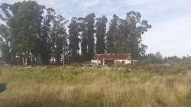 Vendo o permuto 8 hectareas en uruguay