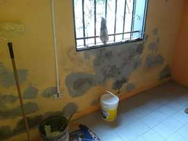 Pintor de casas .dptos. locales. Etc