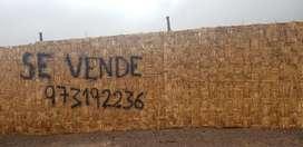 REMATO TERRENO 435 M2 EN LOS ANGELES MOQUEGUA