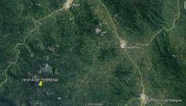 Vendo Has de Terreno Agrícola - Capiro Llaylla - Satipo