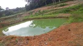 De oportunidad se vende una finca de 26 hectáreas en el cantón Lago Agrio- vía 10 de Agosto- Cochas del Vetano