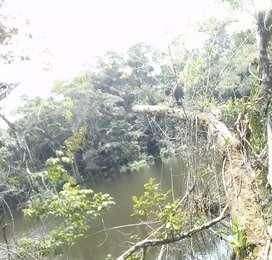 Se vende 5 hectáreas con laguna natural