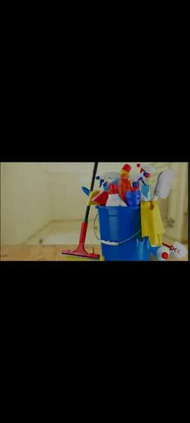 Servicio Domestico-Limpieza