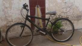 Vendo Bicicleta Lunardi usada