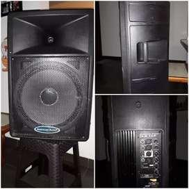 Parlante amplificado Americano Audio DLS 15p