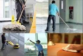 servicio de mantenimiento y limpieza de inmuebles  por dias