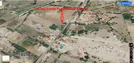 terreno en oferta area 2.5 has filo de pista entre Morrope y Lambayeque precio 95,000 por has