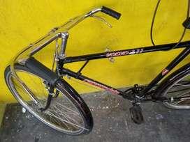 Bicicleta_turismo