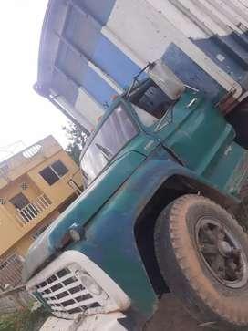Camión capacidad 12 palets