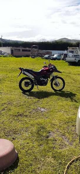 Vendo moto Z1 brother 250 en perfecto estado 1,500