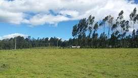 Terreno 2 Has. en Cotogchoa, Amaguaña