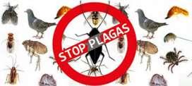 La Casa del Exterminador Control de Plagas