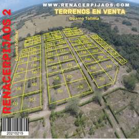 Terrenos premium para casa campestre Guamo Tolima