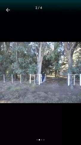 Quinta 5 hectáreas
