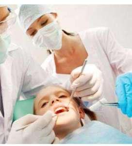 Necesito Asistente Dental
