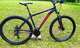 Bicicleta GW zebra L 29