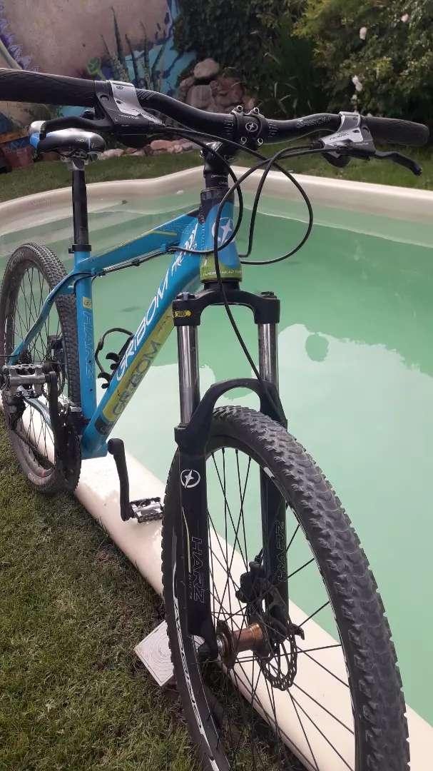 Bicicleta Gribon 0