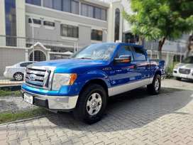 Ford F-150 (Año 2010)