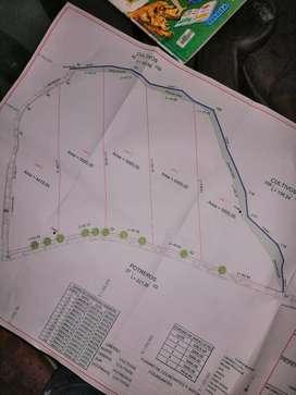 Vendo permuto hermosos lotes de 5000metros1/2htreaa2000metros del  puente alcaravan
