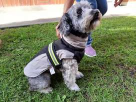 Vendo hermosos chalecos para perros...