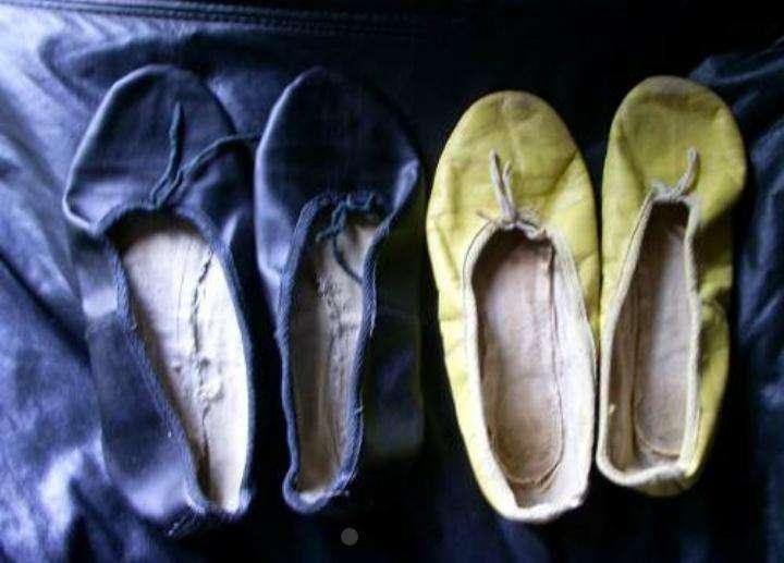 Zapatillas para Gimnasia Femenina Nro.35 0