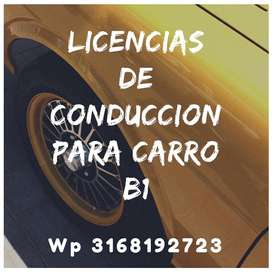 Cursos Y Licencias de Conduccion