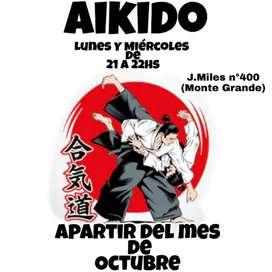Escuelas de Aikido Arte Marcial Japonesa