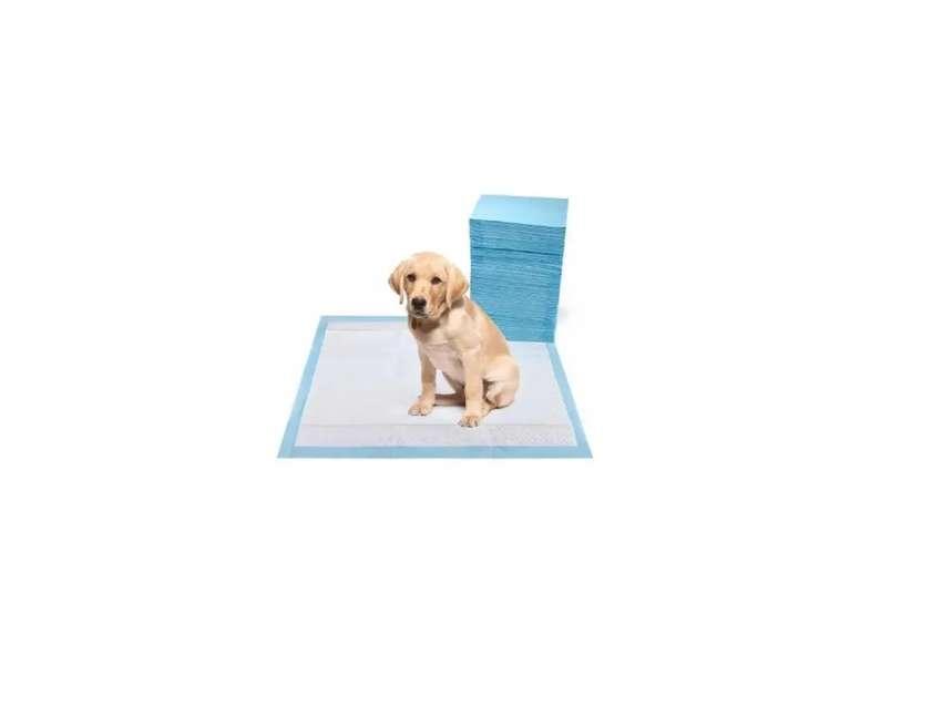 Toalla entrenamiento para cachorros